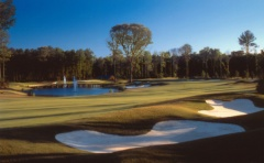 Virginia Beach golf